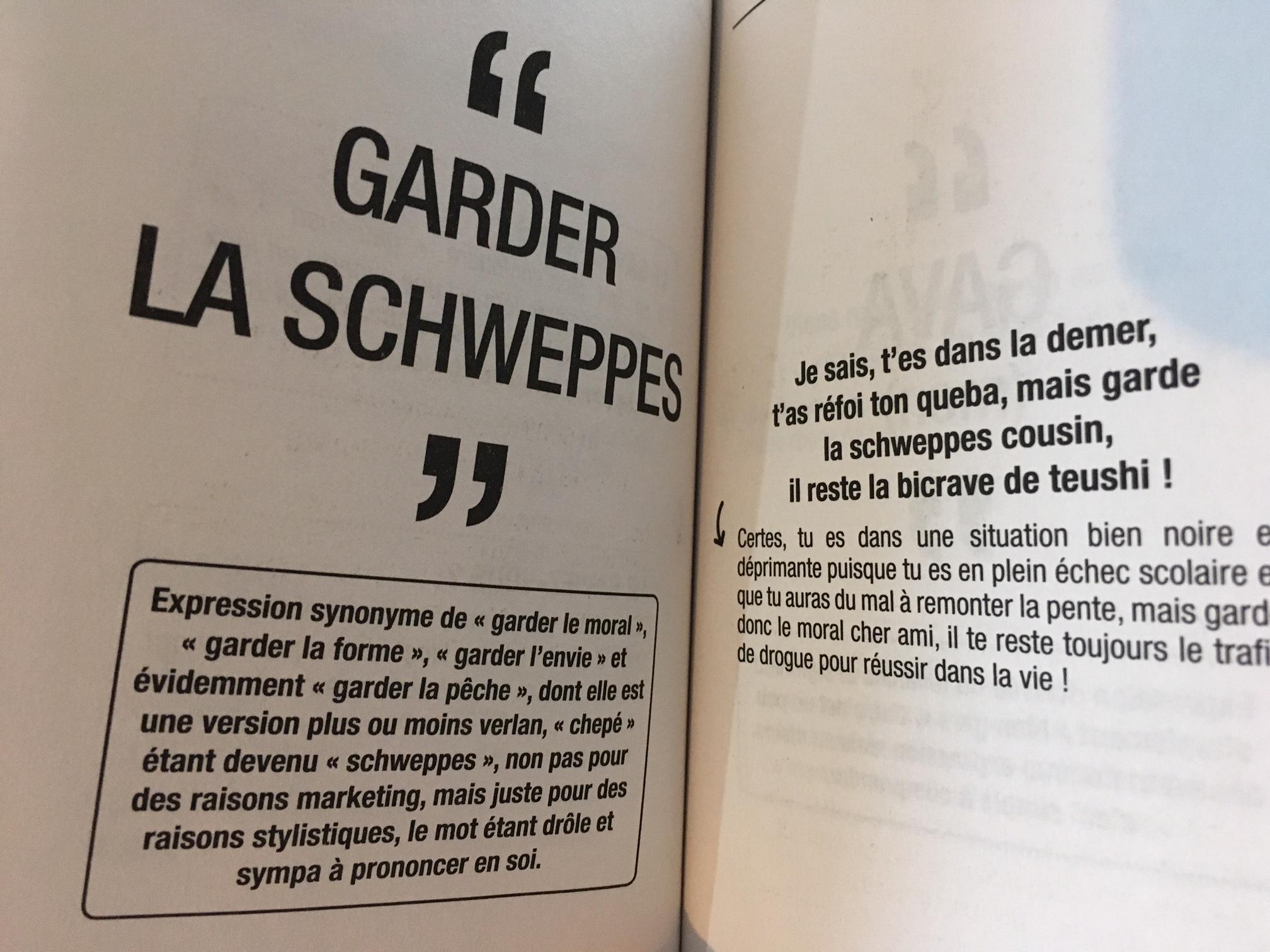 un livre pour devenir bilingue ado  fran u00e7ais